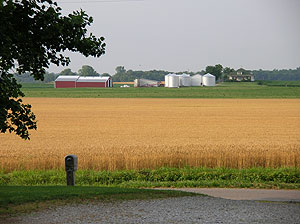 Southern Illinois Farm